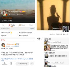 chinese popular social media